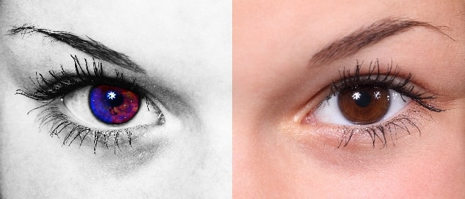 different eyes different views